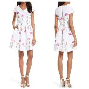 Ted Baker Callila Sketchbook Floral Dress Size 4